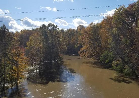 Vermilion River Fall 2018